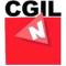 Logo NIDIL CGIL